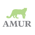 Amur Equipment Finance